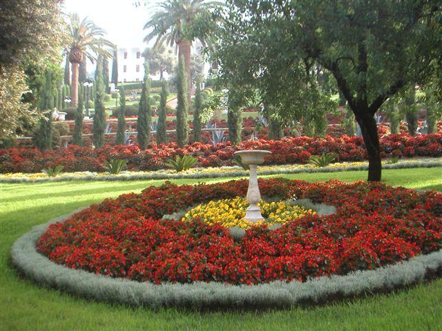 Az adminisztratív épületek előtti szép kert Haifában