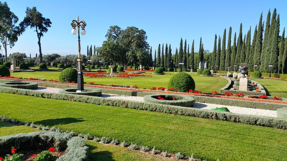 A meglévő, idős fák és a későbbi beültetések játéka az izraeli szép kertben